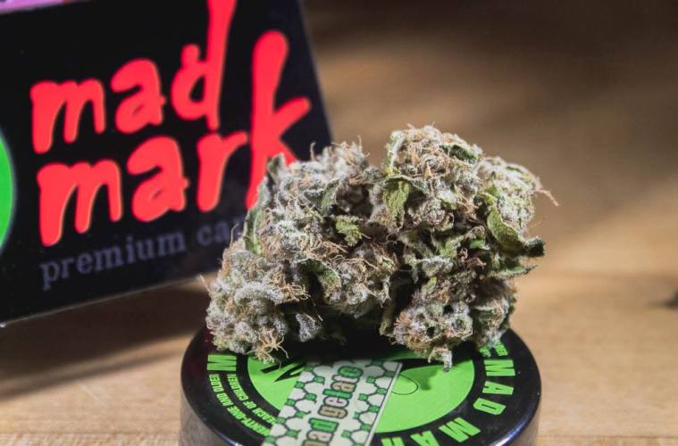 West Coast Weed Tour Washington Awards: Best Flower These Are Your 2019 West Coast Weed Tour Awards Mad Gelato From Mad Mark Farms Is What Gelato Should Be