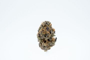 DJ Short Blueberry From Rosebud Growers Is Classically Fruity And Loud