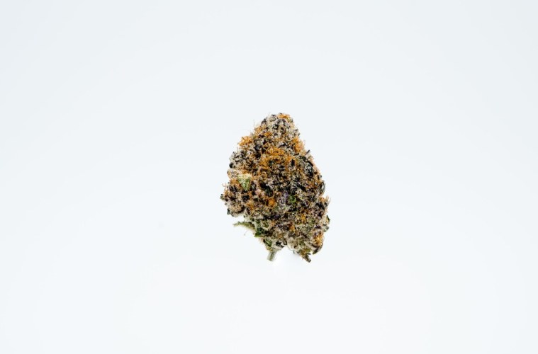 The Purple Punch Cannabis From Rosebud Growers Smells Like Creamy Fresh-Baked Muffins