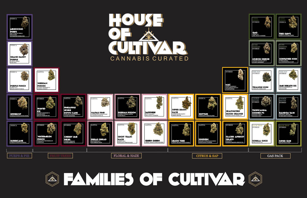 House Of Cultivar's 'Families of Cultivar' Aim To Expand Consumers' Knowledge of Cannabis Genetics