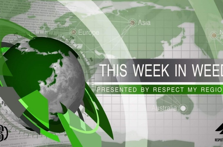 This Week In Weed: Another DEA Lawsuit, New Legalization Research, A Call For Federal Legalization Waivers, And The Supreme Court's Refusal To Hear A Legalization Case
