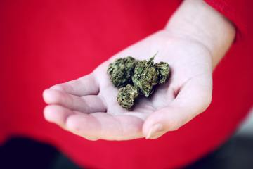 State-To-State Legislation Is Causing The Majority Of The U.S. To Smoke Mids