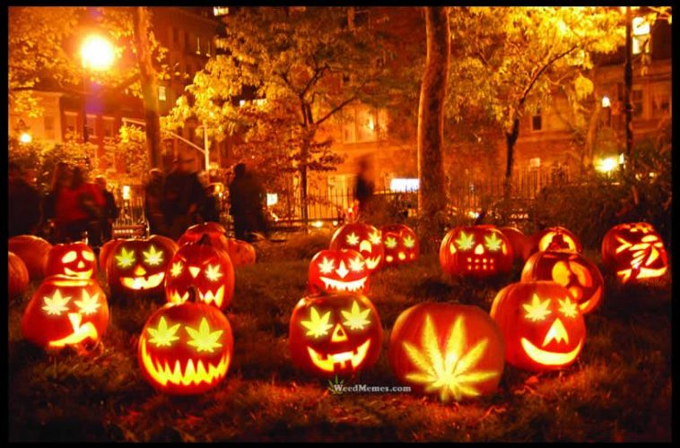 10 Spooky Stoner Costumes that will Elevate your High Halloween Look
