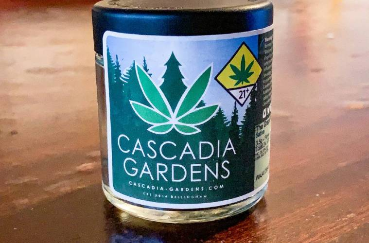 The Grapefruit Strain Review Featuring Cascadia Gardens