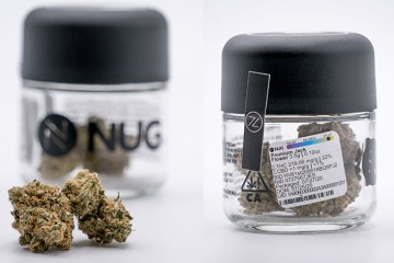 The Premium Jack Strain Review Featuring NUG In California