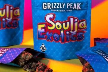 Soulja Boy x Grizzly Peak - Soulja Exotics