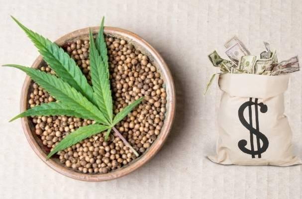 California cannabis sales
