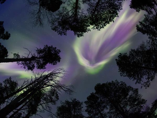 Tampere Northern Lights