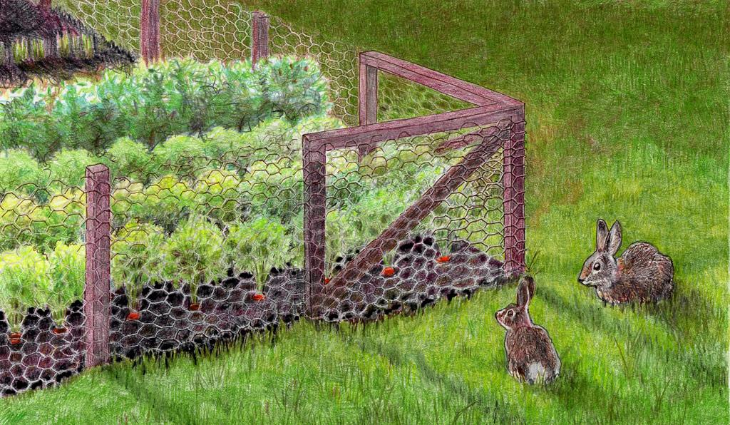 secure plants