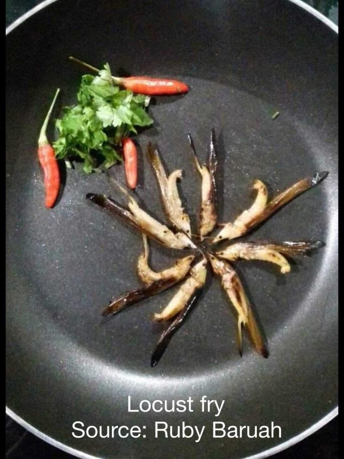 Locust fry