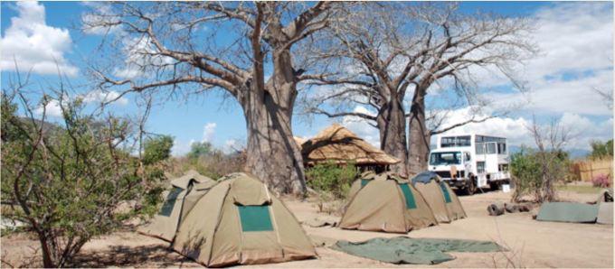 Tourist erected tents in Mangochi