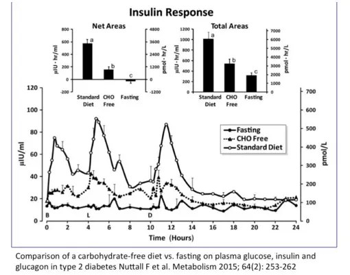 Insulin response to fasting and low CHO diet