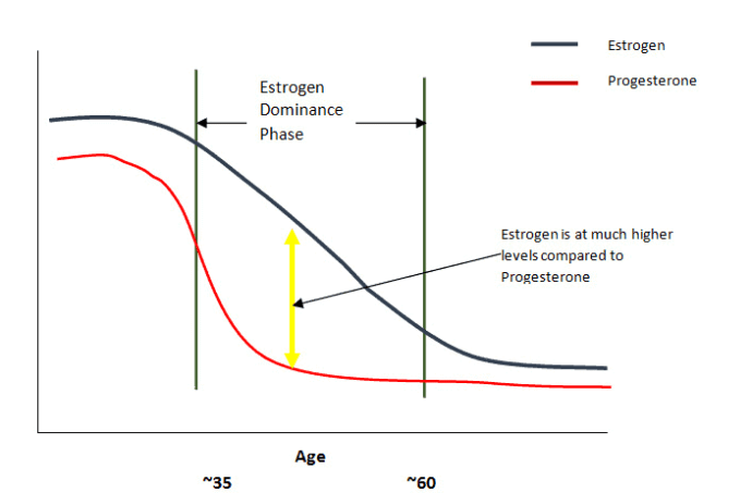 age related decline of estrogen and progesterone