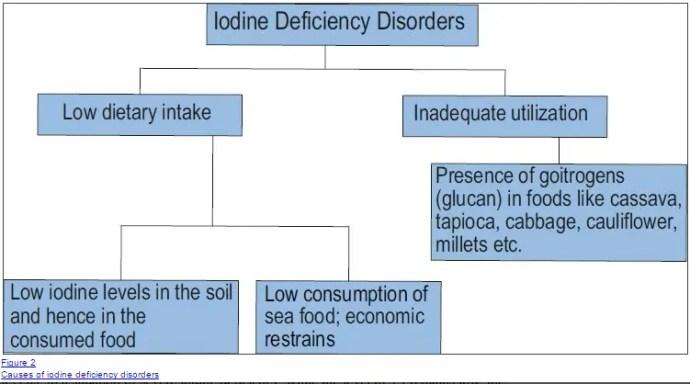 causes of iodine deficiency