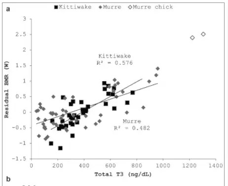 Total T3 levels correlate with weight