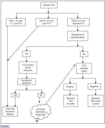 TSH treatment algorithm