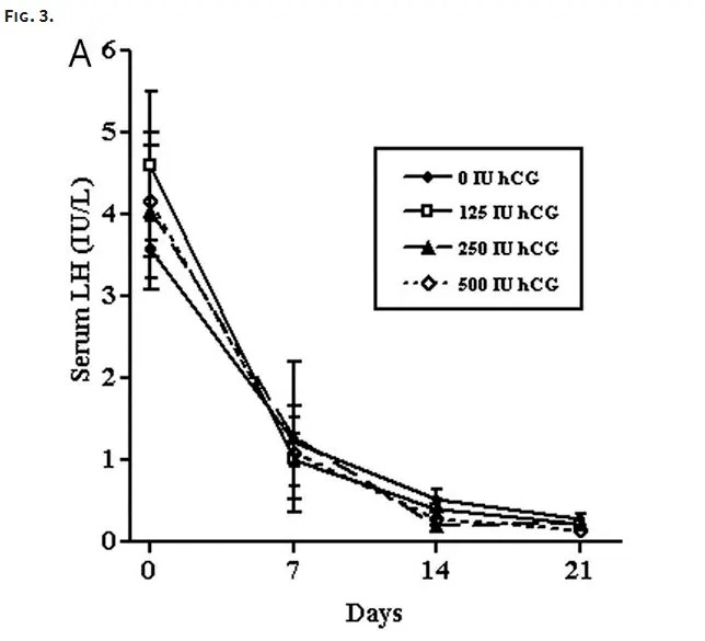 serum lh and FSH drop in response to hcg in men