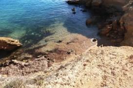 Swim rest 4