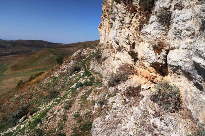 Rossella trail
