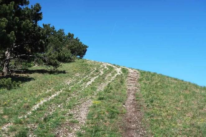 Plešivec - odporúčané turistické trasy/ cyklotrasy
