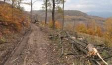 Marhát - Považský Inovec - Odporúčané turistické trasy/ cyklotrasy
