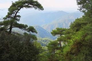 100 km Cyprus: Na streche Cypru