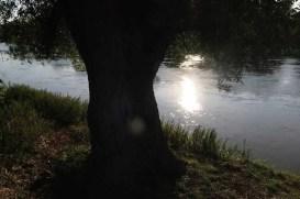 Podvečer na Morave