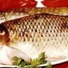 Saramură pescărească de crap