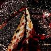 Muşuroi de furnici (desert)