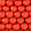 Retete de post: Salata de rosii cu busuioc