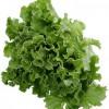 Ciorba de salata verde cu zer acru