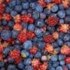 Spumă de iaurt cu fructe