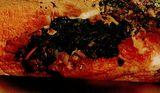 Pulpă de miel cu varză si legume