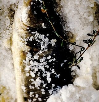 Biban de mare în crustă de sare