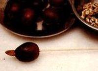 Pasta de prune