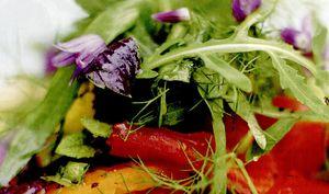 Salată de ierburi pe bruschetta cu roşii