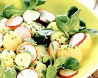 Salata cu ridichi