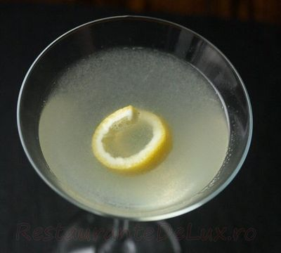 Cocktail_Martini_08