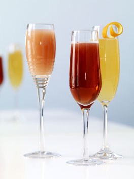 Cocktail Selva Line