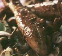 chicken_with_wild_mushrooms