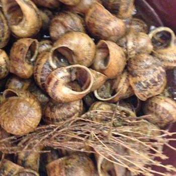Ca L'Estevet snails (salt, pepper and thyme)