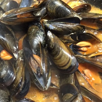 Mussels, Steamed or in Marinière Sauce