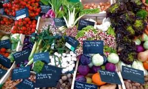 Outdoor Food Markets