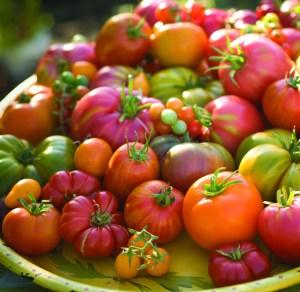 heirloom-tomatoes-istoc39e1_6-16-14