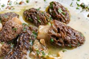 Sautéed-Morel-Mushrooms