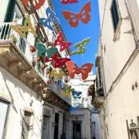 Martina Franca, il Comune fa svolazzare farfalle per presentare il cartellone di eventi