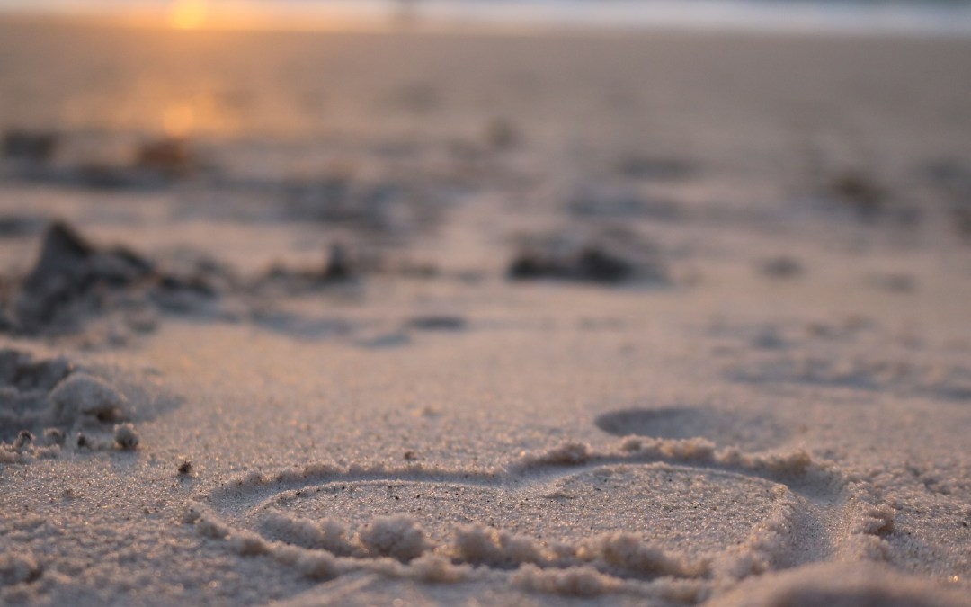 I nomi sulla sabbia – Janine Lucia