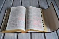 Biblie piele personalizata9