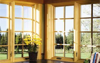 windows doors repair replacement