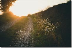 path-691233_1280